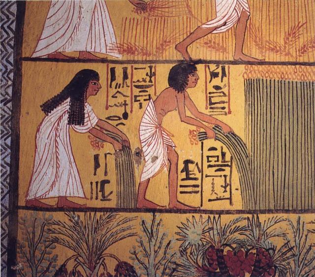 5 Kekeliruan tentang Mesir Kuno: dari Soal Unta hingga Paras Biasa Cleopatra  (362657)