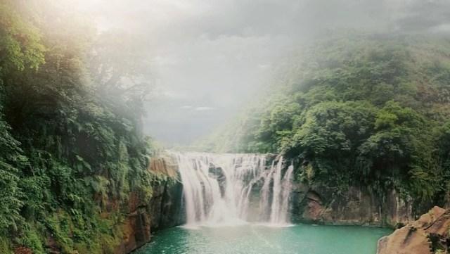 Penelitian Terbaru: Beberapa Hutan Tropis Tangguh terhadap Perubahan Iklim (52432)