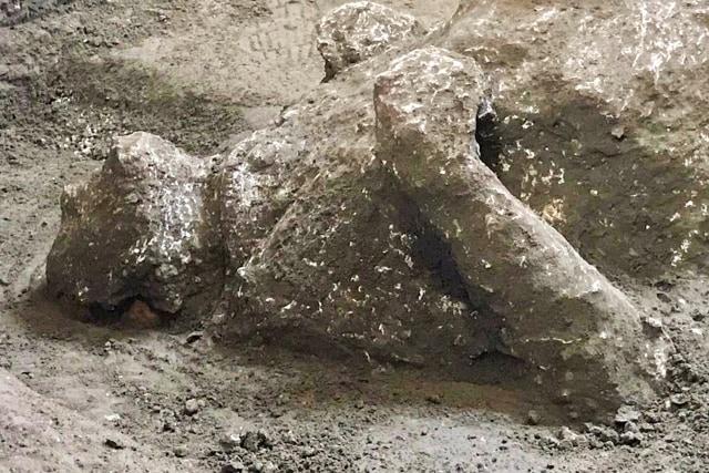 Ditemukan Jasad dari Tahun 79 Masehi Korban Letusan Gunung Kota Kuno  (419867)