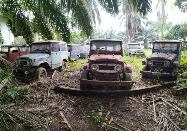 Jarang yang Tahu, Inilah 'Kuburan' Toyota Hardtop di Sumatera Utara (441595)
