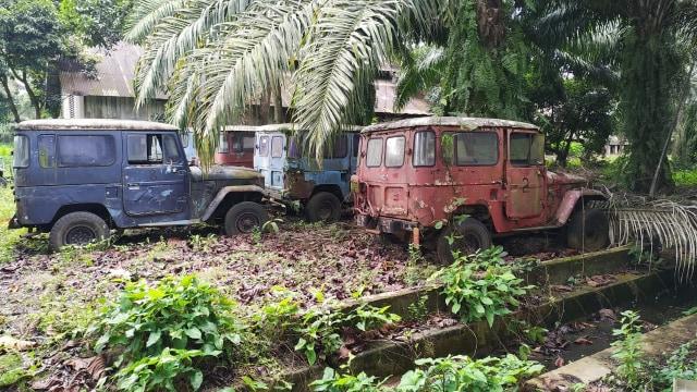 Jarang yang Tahu, Inilah 'Kuburan' Toyota Hardtop di Sumatera Utara (441597)