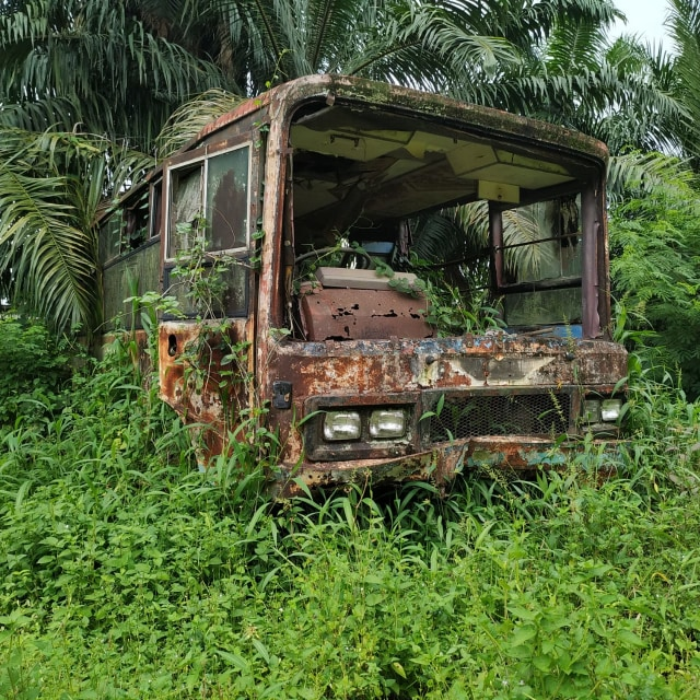 Jarang yang Tahu, Inilah 'Kuburan' Toyota Hardtop di Sumatera Utara (441601)