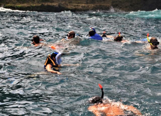Mau Coba Snorkeling Pertama Kali? Ini 7 Hal yang Harus Kamu Perhatikan (76808)