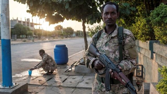 PM Ethiopia Sebut Operasi Militer di Tigray Telah Usai (251554)