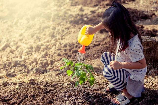 Kiat Dukung Potensi Prestasi Anak Generasi Maju (87138)