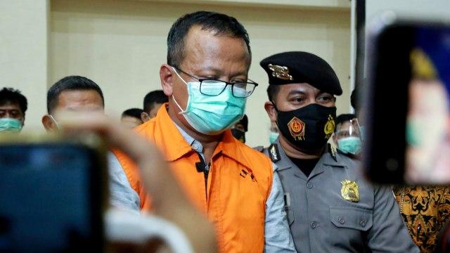Populer: Jubir Luhut Bicara soal Edhy; Jokowi Diminta Setop Ekspor Benih Lobster (17027)