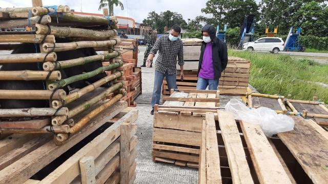 Panglima TNI Kirim 59 Babi Hutan Untuk Perayaan Bakar Batu di Papua (108402)
