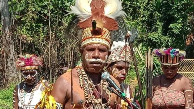 Panglima TNI Kirim 59 Babi Hutan Untuk Perayaan Bakar Batu di Papua (108401)