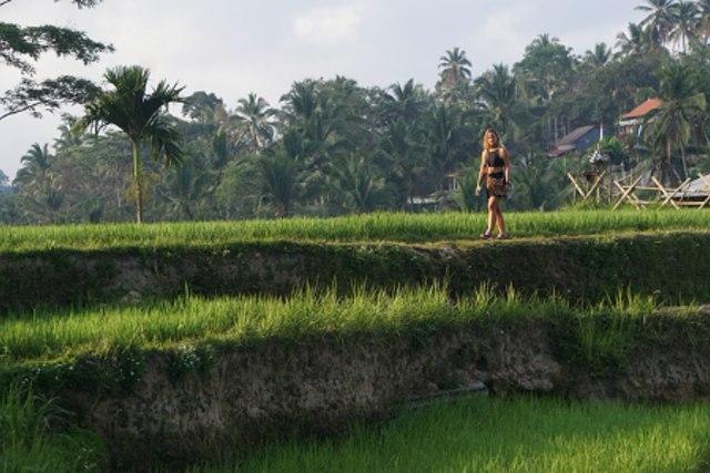 Menilik Potensi Agrowisata di Indonesia (249873)