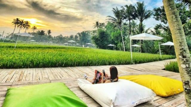 Menilik Potensi Agrowisata di Indonesia (249875)