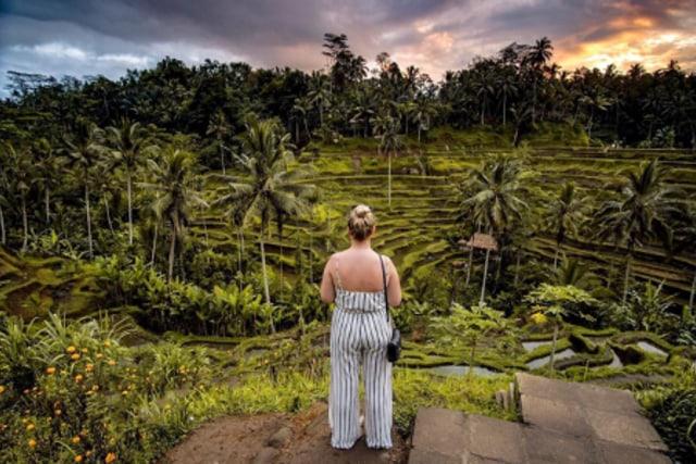 Menilik Potensi Agrowisata di Indonesia (249878)