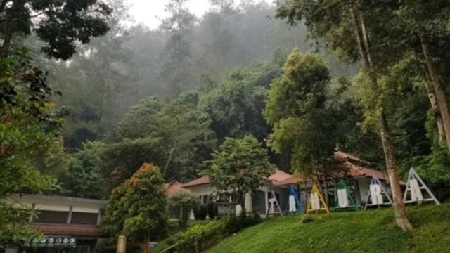 Rekomendasi 5 Kebun Raya di Indonesia untuk Wisata Bersama Keluarga (210102)