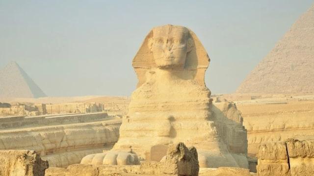 Kucing Sebagai Hewan Suci Bagi Bangsa Mesir Kuno (49689)