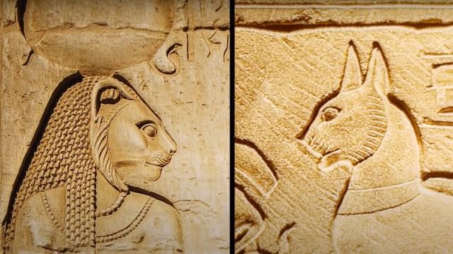 Kucing Sebagai Hewan Suci Bagi Bangsa Mesir Kuno (49690)