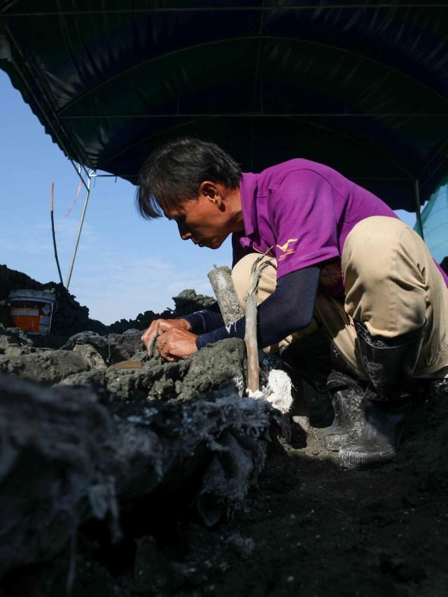 Foto: Fosil Paus Langka Berusia 5.000 Tahun Ditemukan, Satu-satunya di Asia (10003)