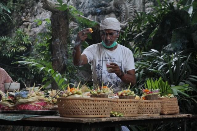 Hormati Hewan, Kebun Binatang di Bali Gelar Tradisi Tumpek Kandang   (27160)