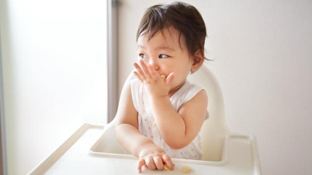 Umur Berapa Bayi Boleh Makan Nangka? (73888)