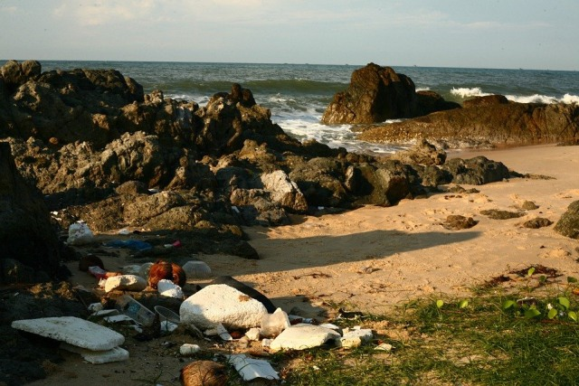 2 Hal yang Sangat Mengancam Kehidupan dan Lingkungan Laut (216709)