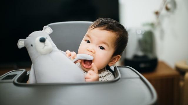 Alasan Anak-anak Suka Main Boneka Binatang (73940)