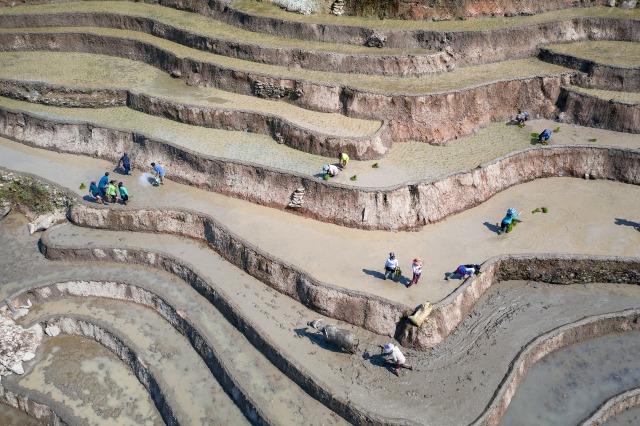 Pranata Mangsa, Teknologi Data yang Dibuat Petani Ratusan Tahun Terancam Hilang (805)