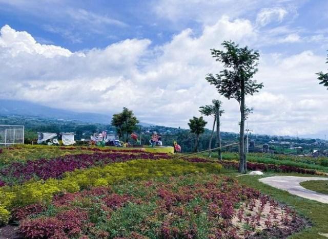 Menikmati Sekitar 500 Jenis Tanaman di Batu Love Garden  (25810)