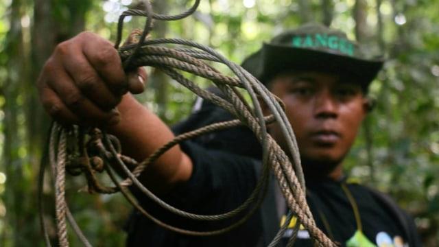Jejak Pemburu di Rimba Leuser, Aceh: Pakai Jerat dan Senapan Bunuh Satwa Liar (469439)