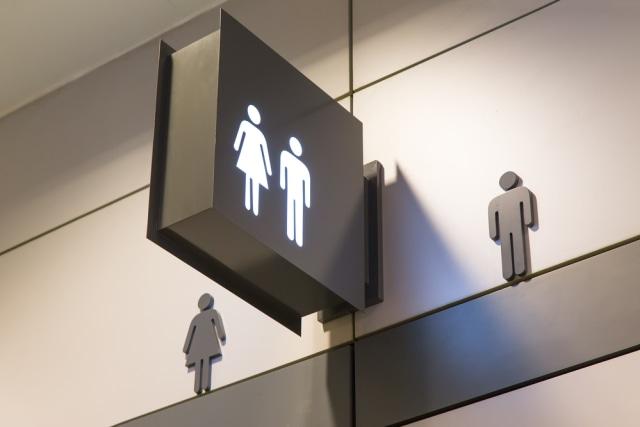 Keren, Toilet di Jepang Bisa Ukur Tingkat Kelelahan Seseorang Usai Mengemudi (213133)
