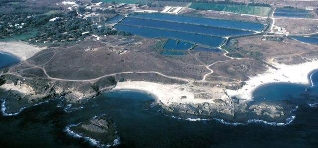 Israel Kuno Pernah Dihantam Tsunami Raksasa, Mirip Kisah Nabi Nuh (256493)