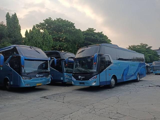 Berita Menarik: 7 Divisi Modifikasi Merek Mobil; Jual Beli Bus Bekas (12133)