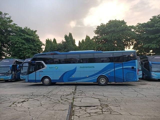 Jual Beli Bus Bekas Mulai dari Rp 600 Jutaan, Berminat? (44213)