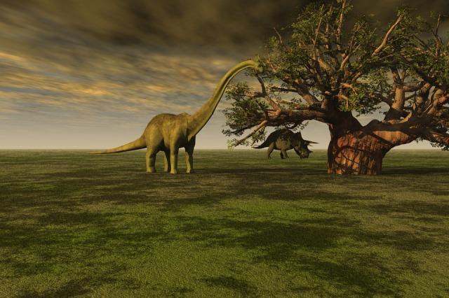 Zaman Mesozoikum Pengertian Ciri Pembagian Dan Kepunahan Kumparan Com