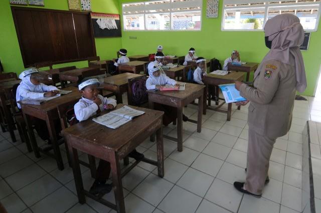 Tak Ada Penerimaan CPNS untuk Guru, Pemkab Mamuju Buka Pendaftaran PPPK (262737)