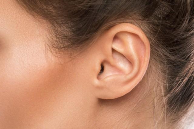 Mengenal Bagian-Bagian Telinga Beserta Fungsinya (236376)