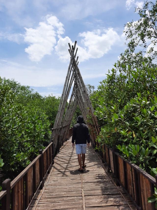 Wisata Ecotourism, Kegiatan Pariwisata yang Cocok Bagi Para Pencinta Alam (10342)