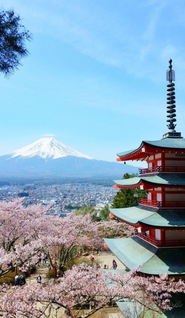 Wisata Halal di Jepang (131681)