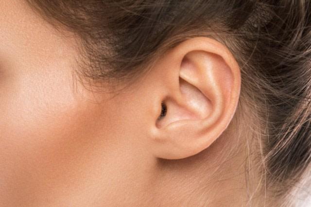 Bagian Telinga dan Fungsinya yang Perlu Diketahui (27324)