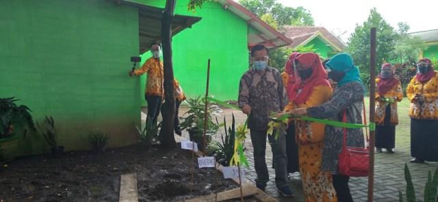 Taman Buah-buahan, Inovasi Warga Bunulrejo Kota Malang di Tengah Pandemi (1)