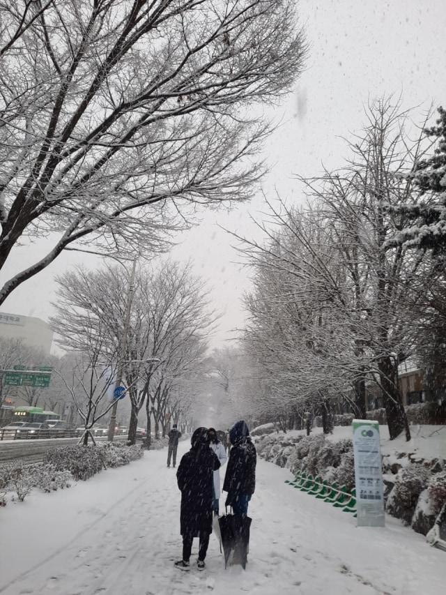 Acehkini Jalan-jalan: Pesona Salju di Kota Seoul (81060)