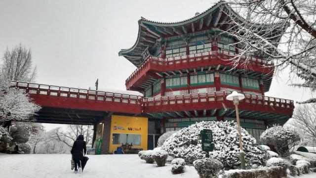 Acehkini Jalan-jalan: Pesona Salju di Kota Seoul (81062)