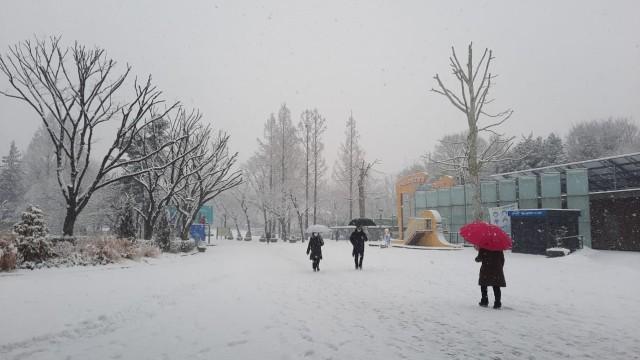 Acehkini Jalan-jalan: Pesona Salju di Kota Seoul (81068)