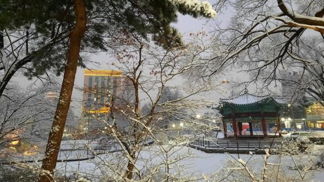 Acehkini Jalan-jalan: Pesona Salju di Kota Seoul (81064)