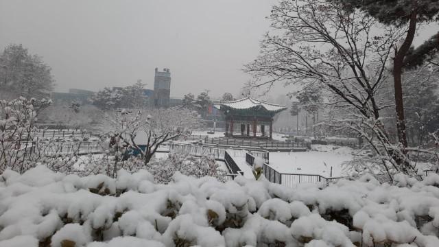 Acehkini Jalan-jalan: Pesona Salju di Kota Seoul (81065)