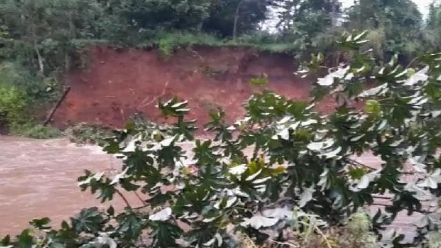 Hujan Deras Guyur Bogor, Tebing Setinggi 7 Meter di Sungai Cisadane Longsor (358959)