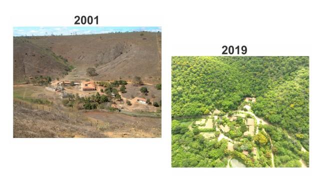 Pada tahun 1998, Salgado dan Istrinya, Leila Deluiz, memutuskan untuk membangun kembali hutan tersebut. Mereka bahkan membangun organisasi lingkungan bernama Istituto Terra dengan tujuan merestorasi semua hutan yang rusak,