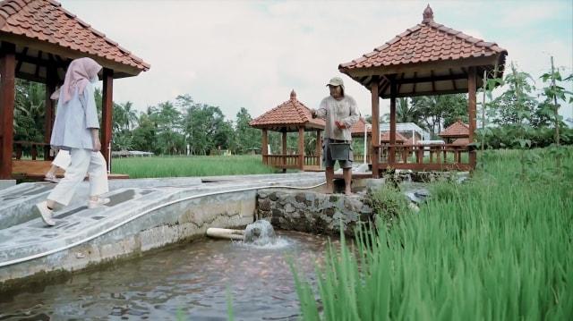 Mandiri Syariah Buat Mina Wisata Technopark di Sleman  (28728)