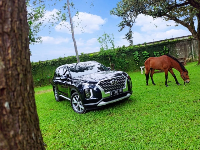 Foto: Apa yang Membuat Hyundai Palisade Menarik? (110834)