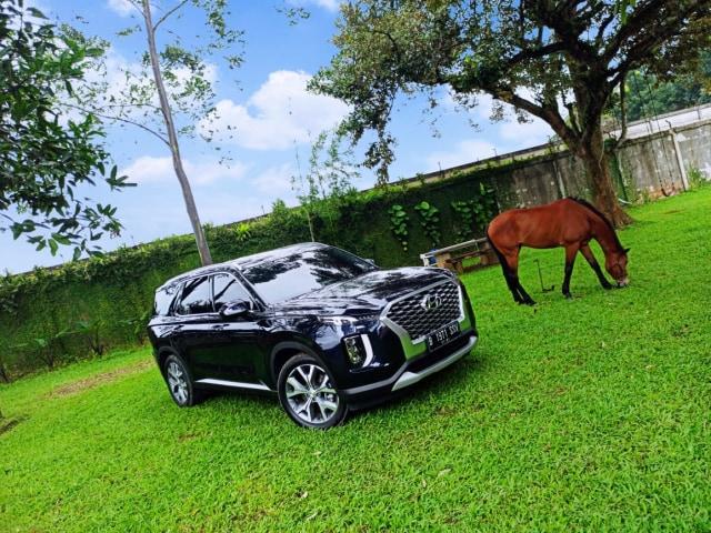 Hyundai Palisade Pakai Mesin Diesel Canggih, Perhatikan Ini Saat Isi Solar!  (573769)