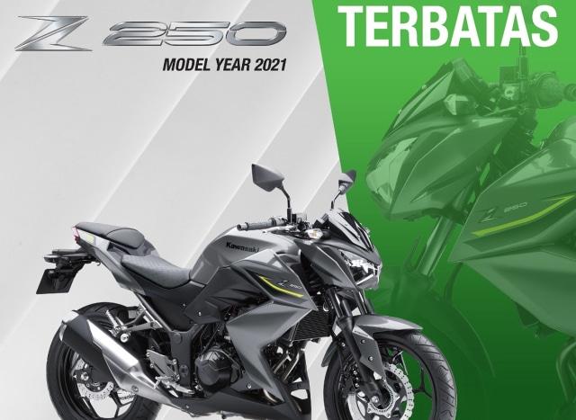 Kawasaki Z250 Hilang Dari Website Resmi, Sinyal Akan Disuntik Mati? (4898)