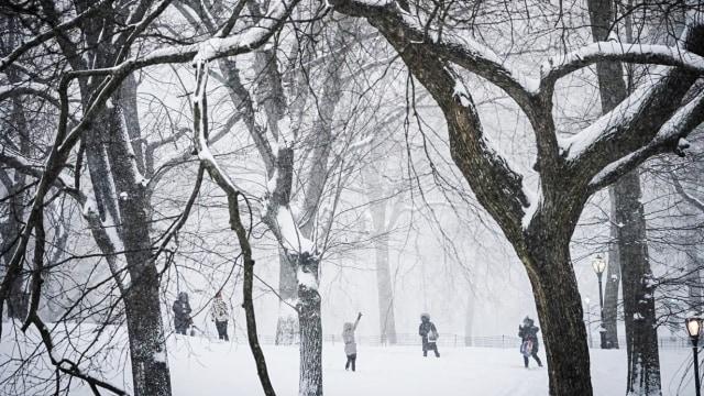 Badai Musim Dingin, Texas Alami Listrik Padam dan Kekurangan Air (104053)