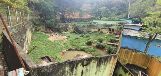 Foto Terkini Suasana Sinka Zoo Usai Harimau yang Lepas Ditangkap Kembali (90975)